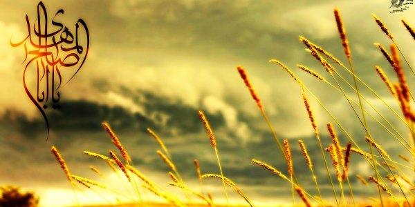 متن نامه های صادر شده از امام عصر(عج) به شیخ مفید....